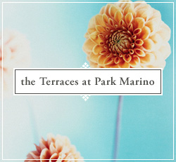 the terraces at park marino